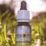 Alchemama 7