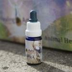 Animal Healing 2