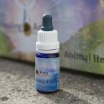 Animal Healing 4