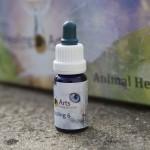 Animal Healing 6